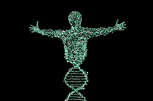 גנטיקה וחרדה
